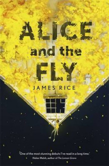 Alice and the Fly av James Rice (Innbundet)
