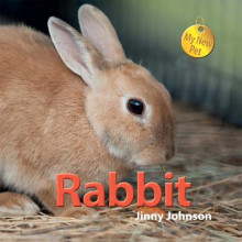My New Pet: Rabbit av Jinny Johnson (Innbundet)