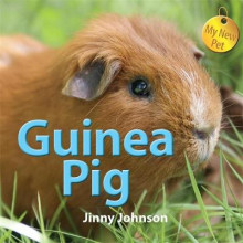 My New Pet: Guinea Pig av Jinny Johnson (Innbundet)