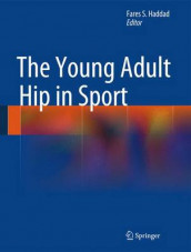 The Young Adult Hip in Sport (Innbundet)