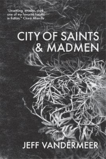 City of Saints & Madmen av Jeff VanderMeer (Heftet)