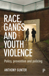 Omslag - Race, Gangs and Youth Violence