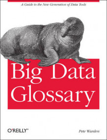 Big Data Glossary av Pete Warden (Heftet)