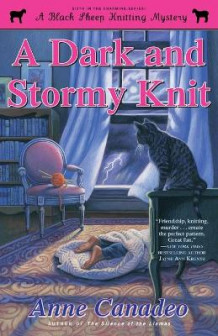 A Dark and Stormy Knit av Anne Canadeo (Heftet)