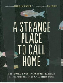 A Strange Place to Call Home av Marilyn Singer (Heftet)