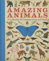 Amazing Animals av Sterling Children's (Innbundet)