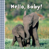 Hello, Baby! av Sterling Children's Books (Kartonert)