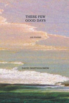 These Few Good Days av David Bartholomew (Heftet)