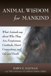 Animal Wisdom for Mankind av Dawn E Hayman (Heftet)