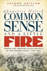Omslag - Common Sense and a Little Fire