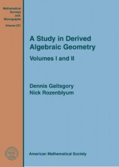 A Study in Derived Algebraic Geometry av Dennis Gaitsgory og Nick Rozenblyum (Innbundet)