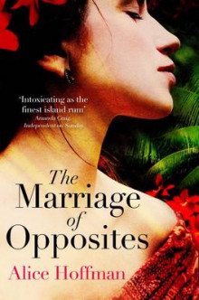 The Marriage of Opposites av Alice Hoffman (Heftet)