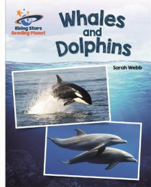 Reading Planet - Whales and Dolphins - White: Galaxy av Sarah Webb (Heftet)