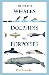 Handbook of Whales, Dolphins and Porpoises av Mark Carwardine (Innbundet)