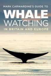 Mark Carwardine's Guide To Whale Watching In Britain And Europe av Mark Carwardine (Heftet)