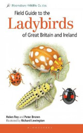 Field Guide to the Ladybirds of Great Britain and Ireland av Dr Peter Brown og Helen Roy (Heftet)