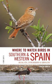 Where to Watch Birds in Southern and Western Spain av Ernest Garcia og Andrew Paterson (Heftet)