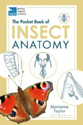 The Pocket Book of Insect Anatomy av Marianne Taylor (Heftet)