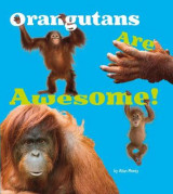 Omslag - Orangutans are Awesome!