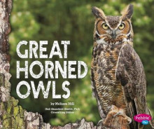 Great Horned Owls av Melissa Hill (Innbundet)