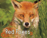 Omslag - Red Foxes