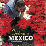 Omslag - Christmas in Mexico