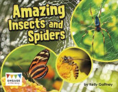 Amazing Insects and Spiders av Kelly Gaffney (Heftet)