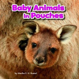 Omslag - Baby Animals in Pouches