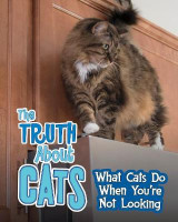 Omslag - The Truth About Cats