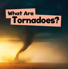 What Are Tornadoes? av Mari Schuh (Heftet)