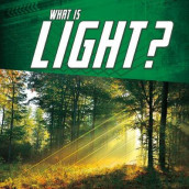 What Is Light? av Mark Weakland (Heftet)