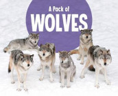 A Pack of Wolves av Martha E. H. Rustad (Innbundet)