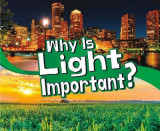 Omslag - Why Is Light Important?