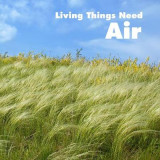 Omslag - Living Things Need Air