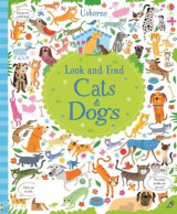 Omslag - Look and Find Cats and Dogs