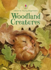 Young Beginners Woodland Creatures av Emily Bone (Innbundet)