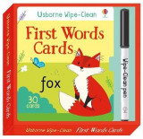 Omslag - Wipe-Clean First Words Cards