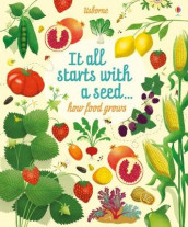 Big Picture Book How Food Grows av Emily Bone (Innbundet)