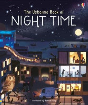The Usborne Book of Night Time av Laura Cowan (Innbundet)