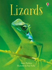 Lizards av James Maclaine (Innbundet)