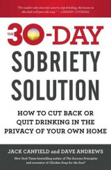 Omslag - The 30-Day Sobriety Solution