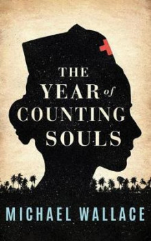 The Year of Counting Souls av Michael Wallace (Heftet)