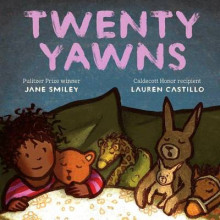 Twenty Yawns av Jane Smiley (Innbundet)