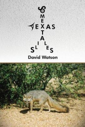 Some Texas Tails Tales av David Watson (Heftet)