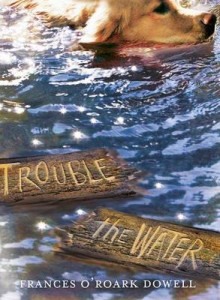 Trouble the Water av Frances O Dowell (Heftet)