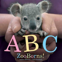 ABC Zooborns! av Andrew Bleiman og Chris Eastland (Heftet)