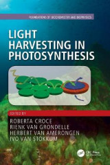 Omslag - Light Harvesting in Photosynthesis