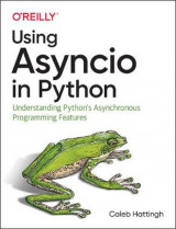 Omslag - Using Asyncio in Python