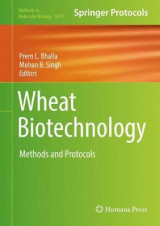 Omslag - Wheat Biotechnology