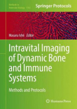 Omslag - Intravital Imaging of Dynamic Bone and Immune Systems